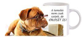 A tanulás... - Bögre