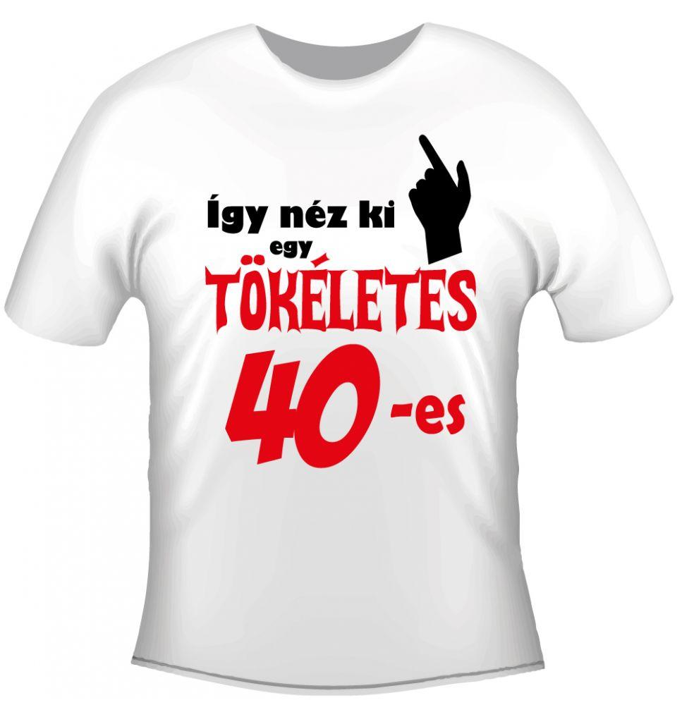 035f6f3c2e Születésnapi póló - Így néz ki a tökéletes - Ajándéktárgyak, Egyedi ...